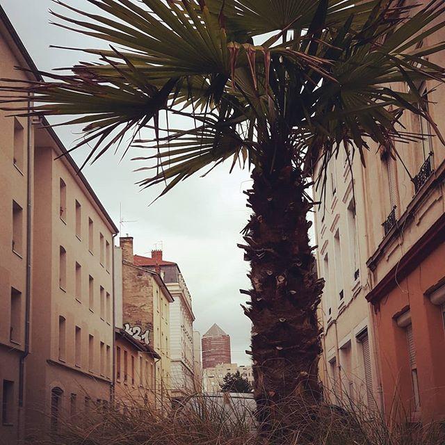 Lyon - Part Dieu plage